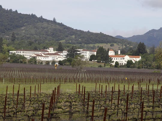 In this April 17, 2011 file photo, vineyards are shown