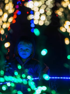 Grady Schuetz, 2, checks out some of the lights on Friday evening, Dec. 1, 2017, at the Gardens on Spring Creek's Garden of Lights in Fort Collins, Colo.