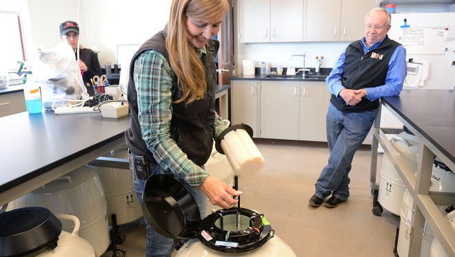 Research Associate Paula Moffet shows how frozen semen is stored in liquid nitrogen tanks at Colorado State University's equine reproduction facility on April 18. CSU tied for the No. 240 spot on U.S. News & World Report's recently released ranking of global universities.