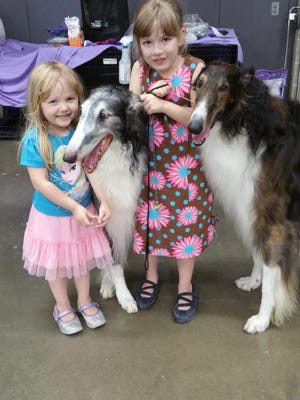Raina McCloskey, 7, of Peach Bottom Township, showed Briar, an 8-year-old male Borzoi. Raina's mother Kari McCloskey is one of Briar's owners. Raina is at right in the photo. Briar is to her left.
