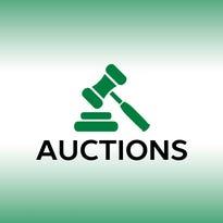 Auction calendar: February 23, 2108