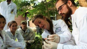 Tick study gets 'astonishing' local response