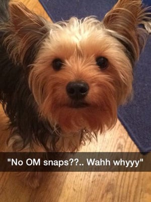 A photo from group member after OM_snaps after the name change.