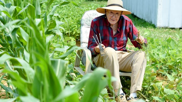 Thomas Lowery sits in a chair next to the rows of corn as he pulls weeds from among his bean plants.
