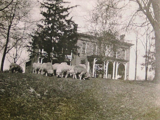Tunis Farms: Seven generations strong