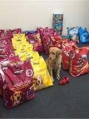 Pet food donations from Stacy Jacob Photography's
