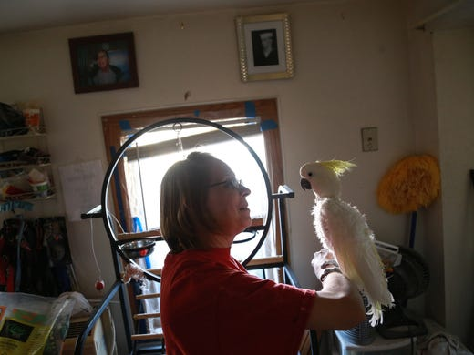 U P  bird lady lives in a house filled with love