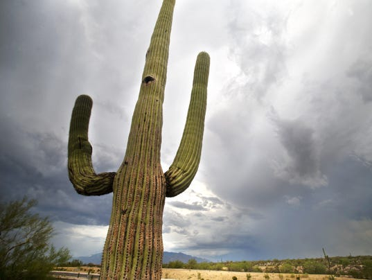 Arizona Weather Monsoon