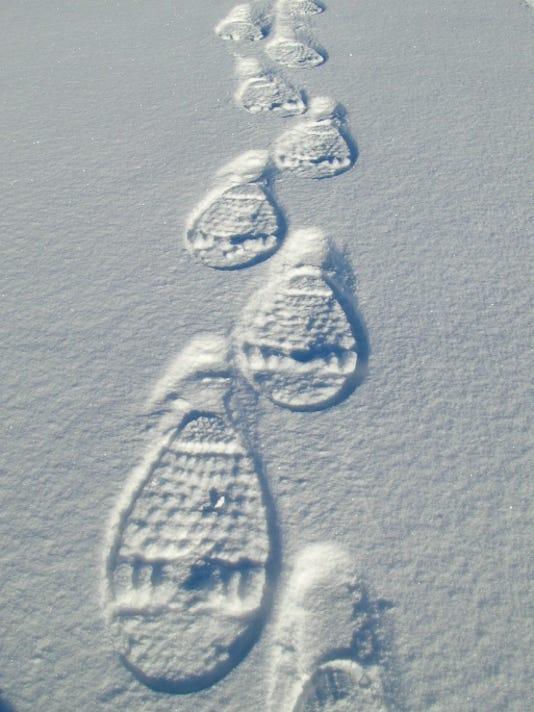 snowshoe tracks.jpg