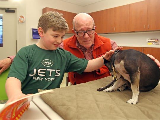 Marshall Eidleberg, 8 pets Paco, a therapy dog of Rockland