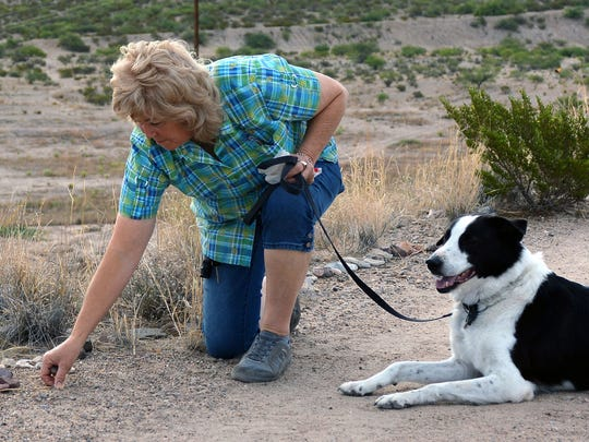Artist Kathy Morrow and her dog Bandit stop along the