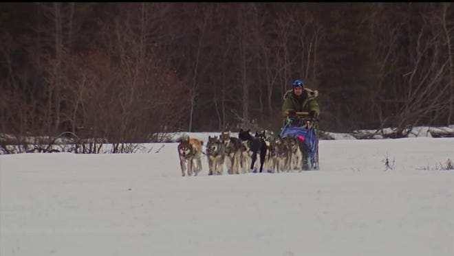 Noah Pereira and his team of sled dogs compete in the 2016 Iditarod, a 1,000-mile trail sled dog race in Alaska.