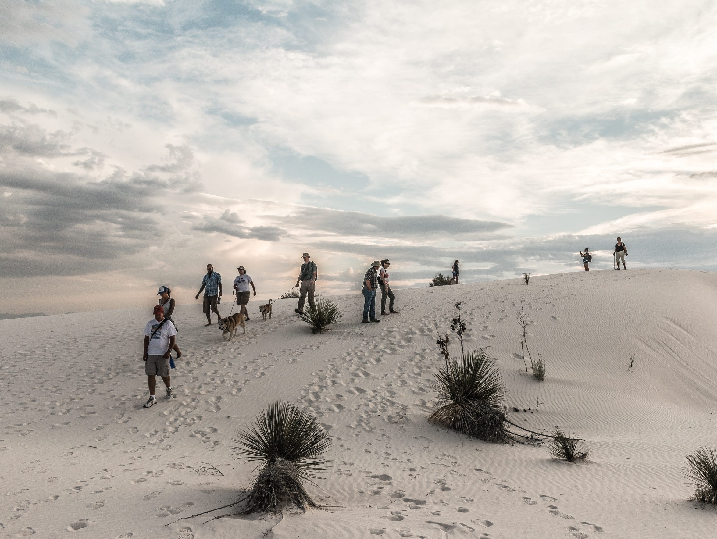 In 2016, White Sands saw record attendance with more