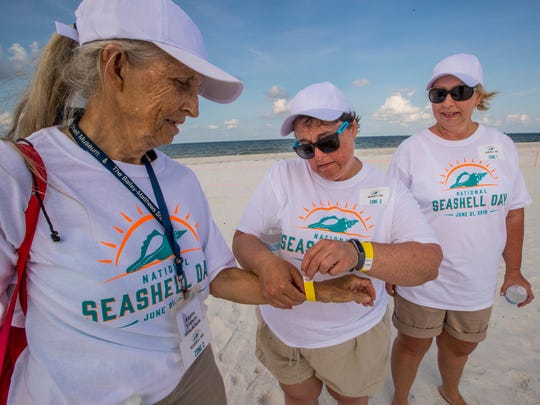 Katrina Boyer, of Pennsylvania, helps Karen Turner, of Sanibel, and her friend Wendy Remick, of Pennsylvania, to put on their wrist bands after being counted for the shell. At The Outrigger Beach Resort tiki hut on Fort Myers Beach, just over 1,000 volunteers gathered on National Seashell Day, to form a human seashell.