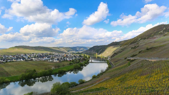 Showstopping scenery abounds throughout Germany's wine regions. Minimal development keeps the countryside bucolic; combined with the classic architecture and fachwerk homes (timber-framed), the effect transports visitors to another century.