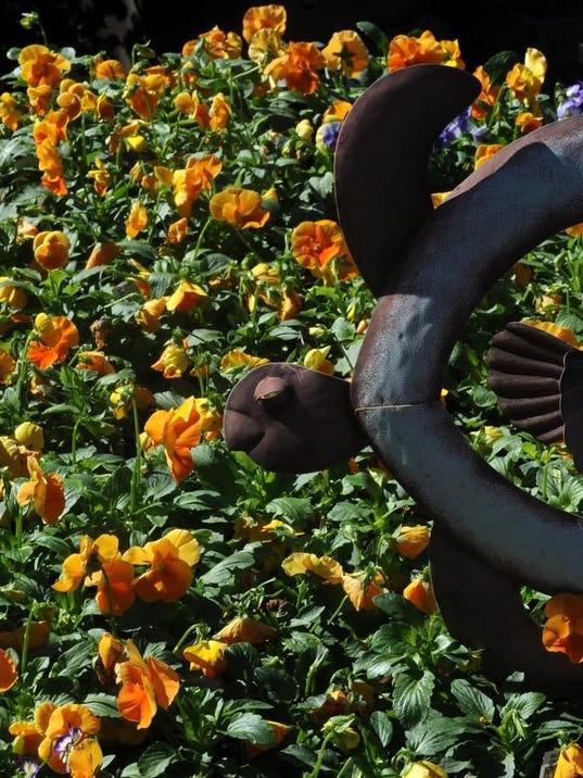 SHR111413fallflowers01.JPG