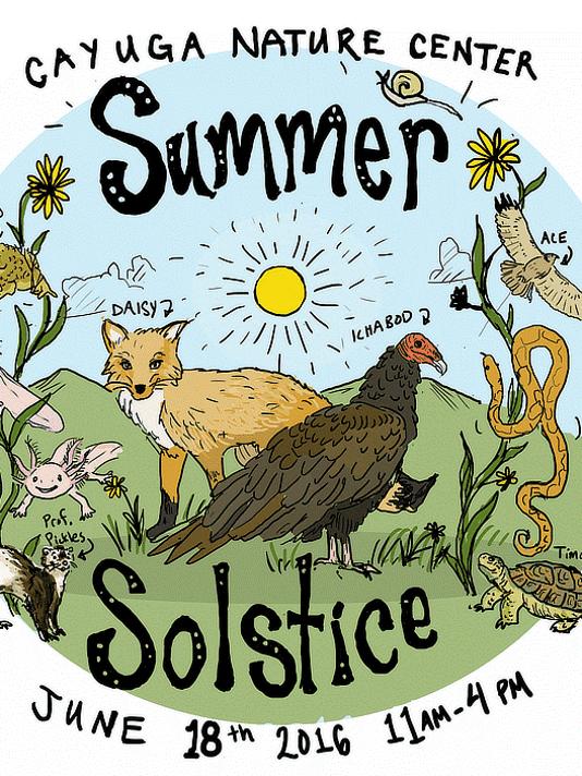 636015976207998811-solstice.png