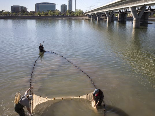 Remaining tempe town lake water will be released downstream for Tempe town lake fishing