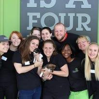 Stolen puppies Serena and Tulay are reunited with the staff at Greenville Humane Society.