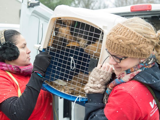 Brandywine Valley SPCA and Wings of Rescue team up
