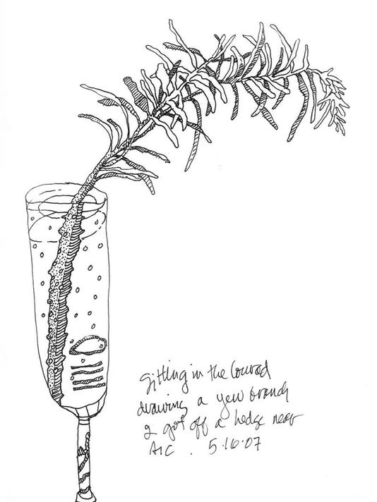 """Yew Branch"" by Bonnie Hull"