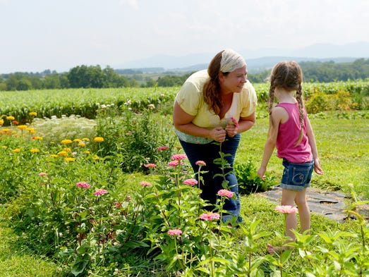 Co-owner of the farm, Jessica Hall and her 4-year-old daughter, Adelaide Hall, zinnia flower from one of their flower beds at Harmony Harvest Farm, a flower farm near Weyers Cave, on Tuesday, August 5, 2014.