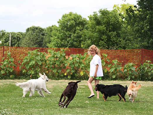 """Debbie """"Fluff"""" Gross is a  frequent visitor to the dog park at the County Community Park. She and her friend, Tina enjoy the open area for their pets to run freely with other at the park."""