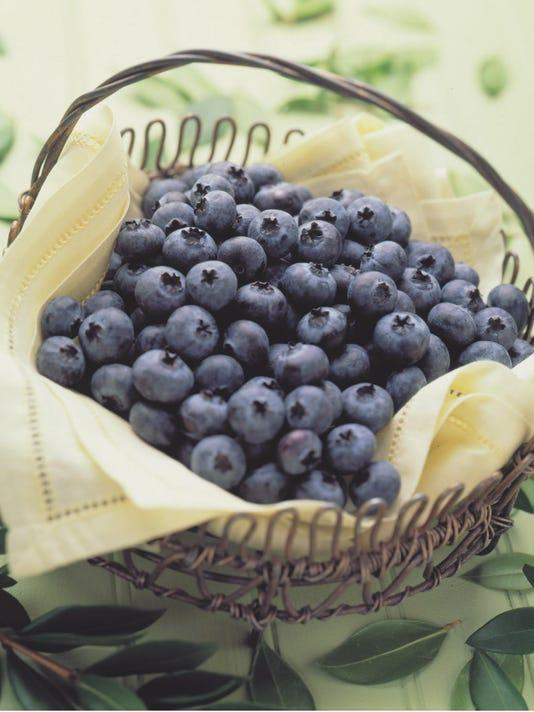 -Blueberry Basket.jpg_20090527.jpg