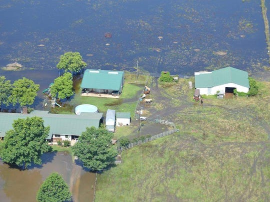 A house and buildings on Old Bayou Pierre Road in Natchitoches Parish is surrounded by backwater.