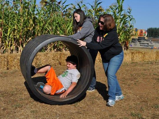 gerbil wheel photo.jpg