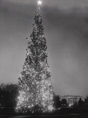 In 1958, the National Christmas Tree, an Engelmann