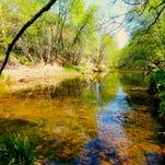 7 swimming-hole and stream hikes near Sedona