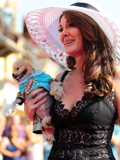 """Real Housewives of Beverly Hills"" star Lisa Vanderpump walks down the pink carpet carrying her dog, Giggy, before a ceremony to unveil her star on the Palm Springs Walk of Stars on Wednesday morning, July 30, 2014 in Palm Springs, Calif."