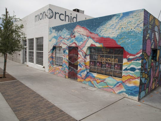 Wayne Rainey,owner of the MonOrchid art gallery in the Roosevelt Arts district, will pay at least$116 in taxes because of GPLETs in Phoenix Elementary.