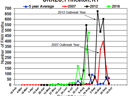 Trap counts of fall armyworms in Princeton, Kentucky. Notice the high numbers of moths caught in Princeton.