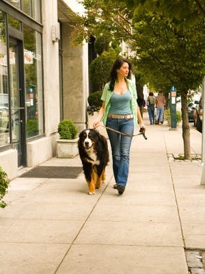 A woman walking her dog is not an invitation to hoots, hollers or other unwelcome advances.