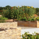 The Edible Garden at Bernheim Arboretum and Research Forest.