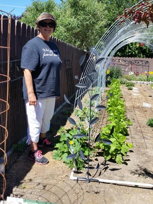 Kim Bull stands with the first squash blossoms of the season in her vertical garden Monday in Yerington.