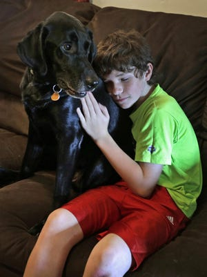 """Jack Baker hugs his father's PTSD service dog, Honor, at his home in Clyde, N.C. """"I'm sure if we gave the dog the choice, he'd prefer not to be uprooted,"""" says Nicole Shumate, executive director of Paws & Effect."""