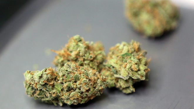 Lemon Skunk at the Cherry City Compassion marijuana dispensary. Oregon marijuana industry leaders traveled to Washington, D.C. in late October to lobby federal lawmakers on cannabis industry finance reform.