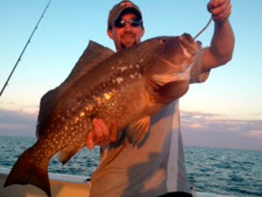 Minneapolis angler Brian Thompson caught this whopper red grouper on a pinfish dropped on a wreck in 90 feet of water at sunset on his A&B Charter trip out of Naples.