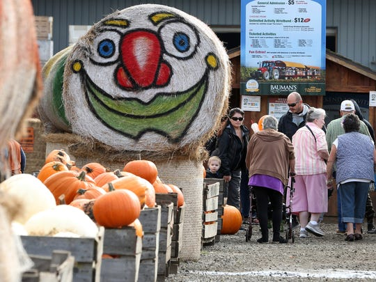Festivalgoers arrive on Saturday, Oct. 1, 2016, at Bauman's Farm in Gervais.