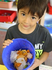 Kindergartener Peyton Lai shows the compost bin with snack waste used for the vermi-composting at Springhurst Elementary School in Dobbs Ferry.