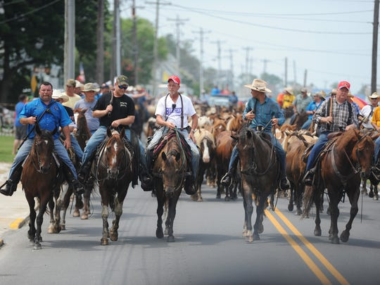 Saltwater Cowboys lead the herd of Chincoteague Ponies through the streets to the carnival grounds after the 91st annual Chincoteague Pony Swim on Wednesday, July 27, 2016.
