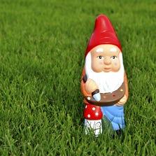 A garden gnome.