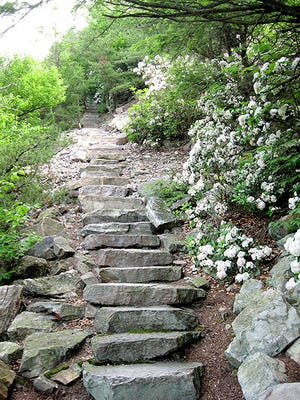 Standing Stone Trail starting at Cowans Gap has been named DCNR's Trail of the Year.