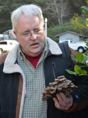 Fungus expert David Pilz will not only talk the talk but walk the walk with presentation and guided walks at 16th annual Yachats Village Mushroom Festival.