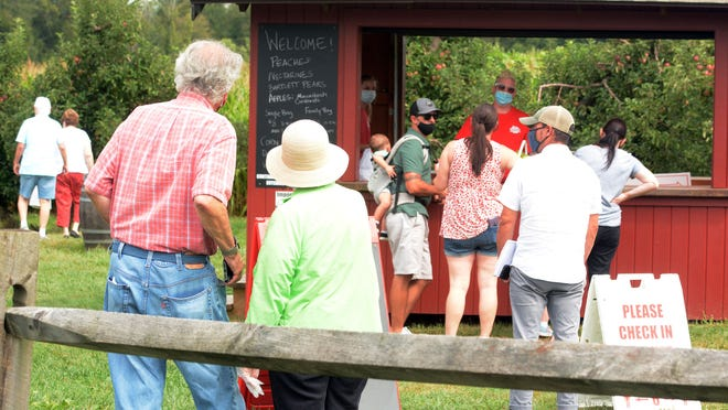 Customers wait socially distanced Wednesday before picking apples and pears at Holmberg Orchards in Gales Ferry. The 60 acre farm has apple, pears, nectarines, peaches and soon pumpkins.  See more photos at NorwichBulletin.com