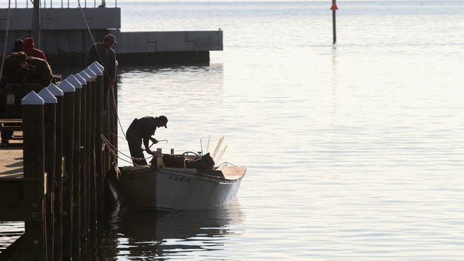 A fisherman unloads his catch of oysters at the new Pass Christian Harbor.