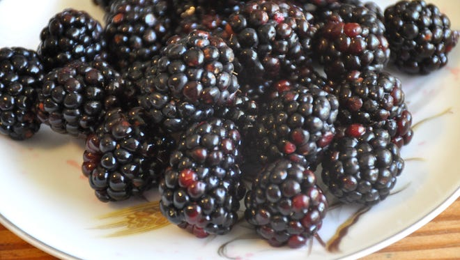 Fresh blackberries are now in season and available at the local farmers markets.